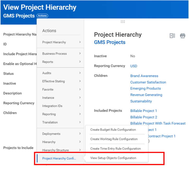 Workday FINS 2020R2 Blog project heirarchy screenshot 2